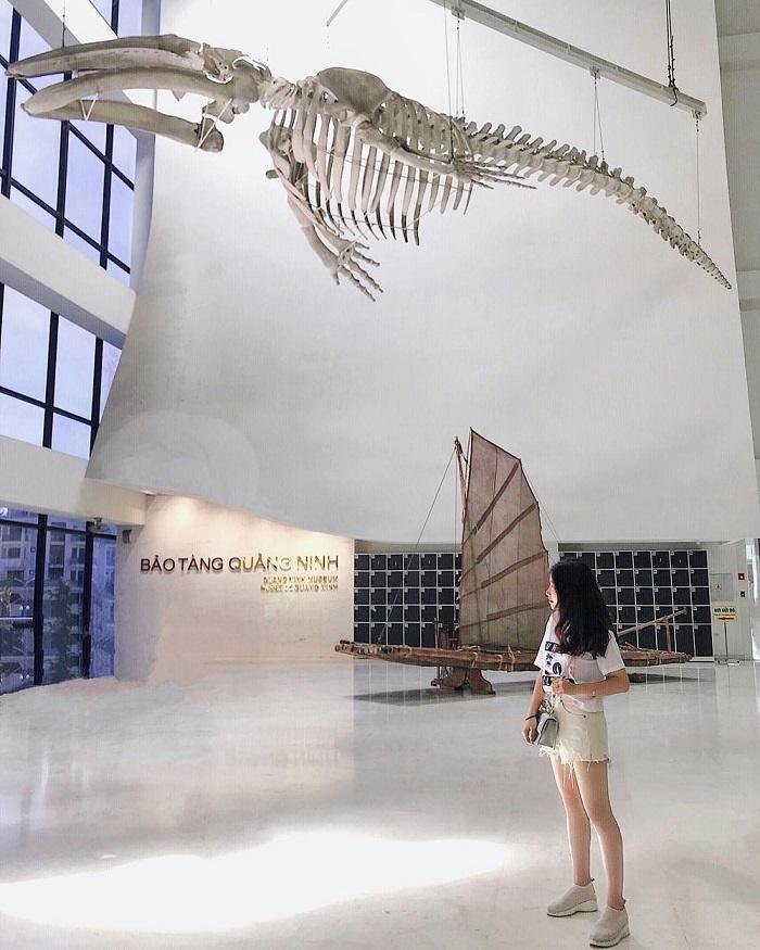 Tầng 2 bên trong bảo tàng Quảng Ninh - Khu vui chơi ở Hạ Long