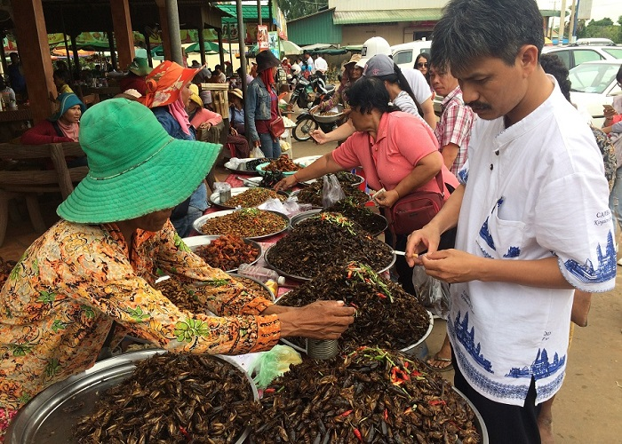 Insect market in Cambodia - a super unique culinary paradise 'the land of the pagoda'