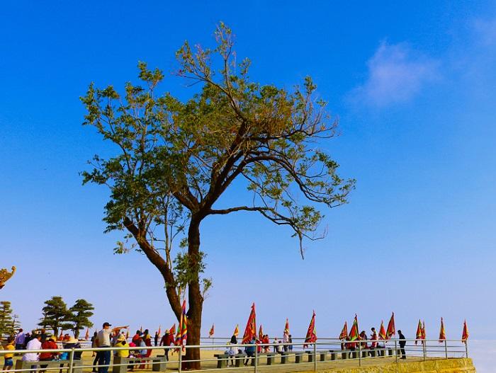 Núi Bà Rá - Thác Mơ Bình Phước cảnh đẹp