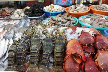 Săn lùng các địa chỉ mua hải sản tươi sống ở Hạ Long