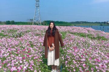 Say đắm vẻ đẹp rực rỡ của làng hoa Lý Trạch Quảng Bình