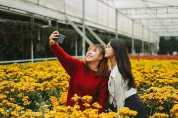 Khám phá làng hoa Mê Linh – thiên đường hoa rực rỡ sắc màu ngay sát Hà Nội
