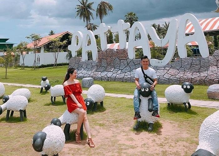 'Vui quên đường về' tại nông trại nuôi cừu Pattaya