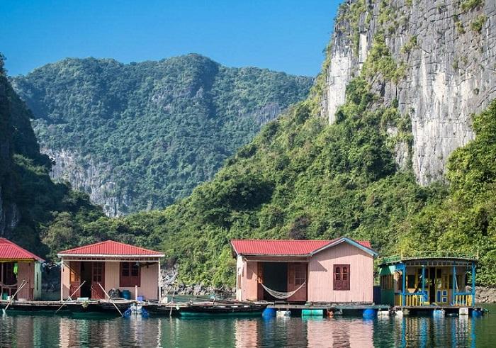 Các làng chài ở Hạ Long - làng chài Vung Viêng