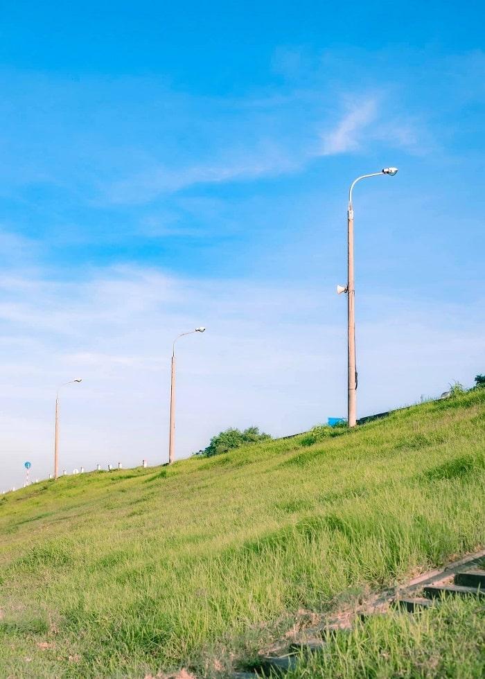 Landscape at Ngoc Thuy reed dyke