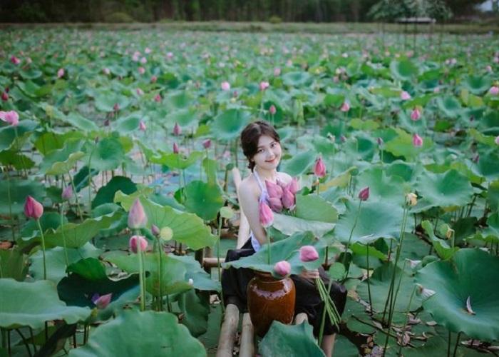 Đầm sen Trường Phước - thiên đường sống ảo ở Quảng Trị