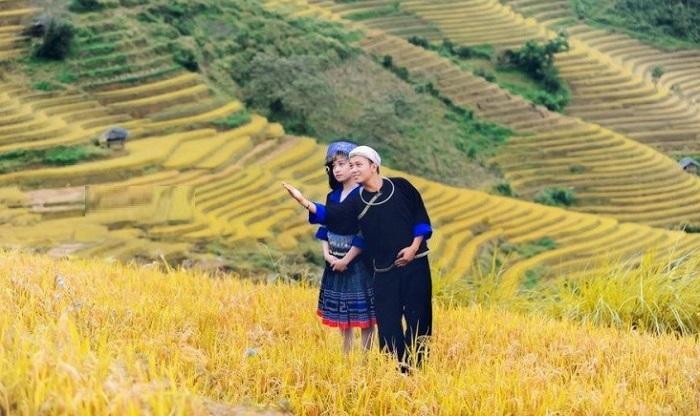 Thời điểm nên đi du lịch đồi chè Tân Uyên Lai Châu