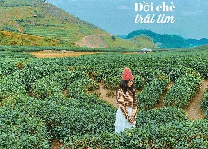 What is the most beautiful season to travel to Moc Chau?