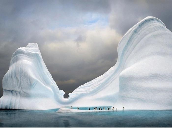 Những tảng băng trôi tuyệt đẹp mà bạn bắt gặp trên đường đi - Du thuyền Nam Cực