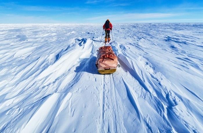 Vẻ đẹp kỳ diệu trên lục địa màu trắng - Du thuyền Nam Cực