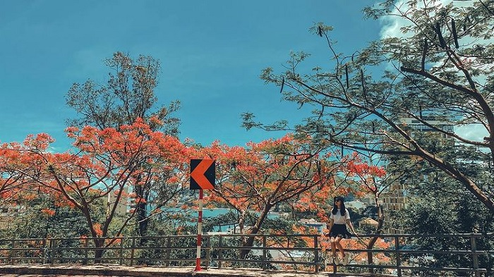 The way to the lighthouse - the beautiful road in Vung Tau looks like a picture