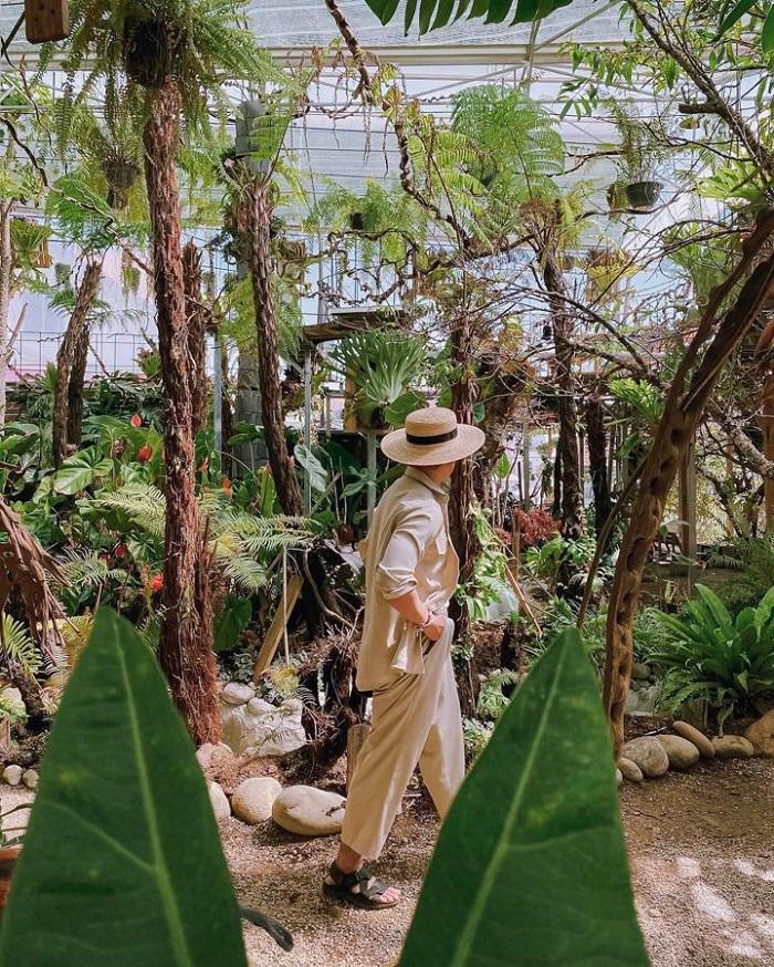 Những homestay sân vườn ở Phú Quốc - Tropical Garden không gian