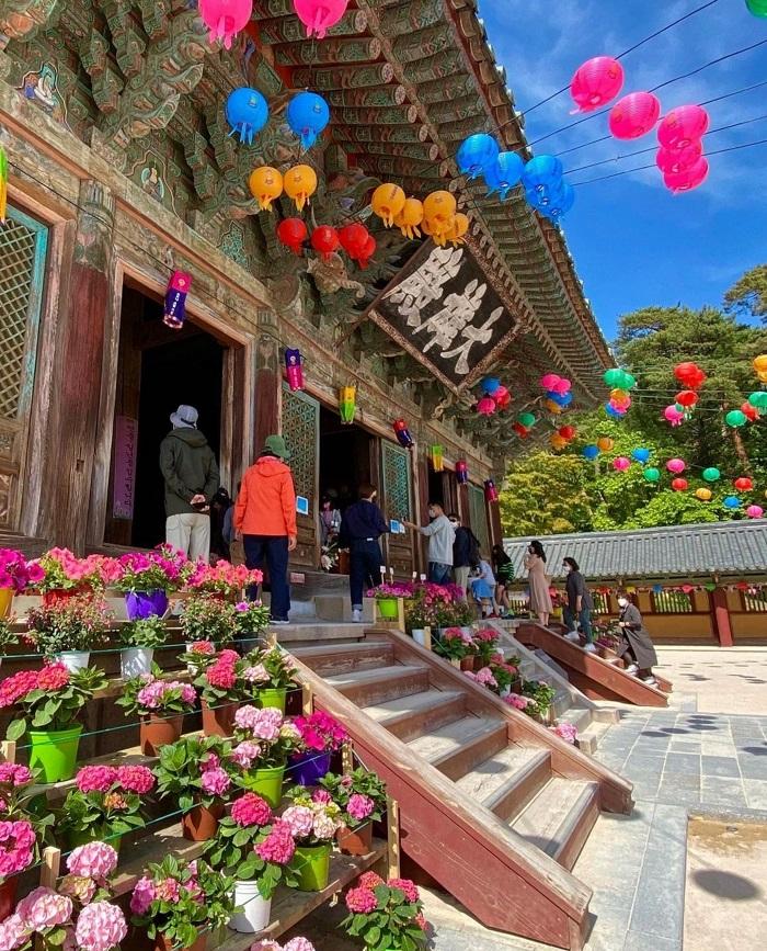 Đến Bulguksa  - Kinh nghiệm du lịch Gyeongju