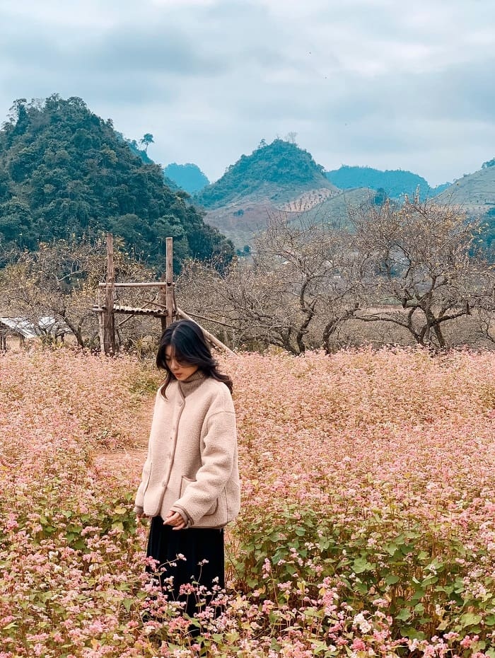 What is the most beautiful season to travel to Moc Chau - autumn?