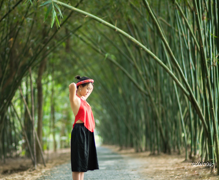 Visiting Bamboo Garden eco-tourism area - Photos
