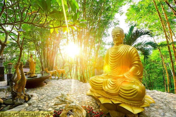Buddha statue in Thanh Son Dharma Institute