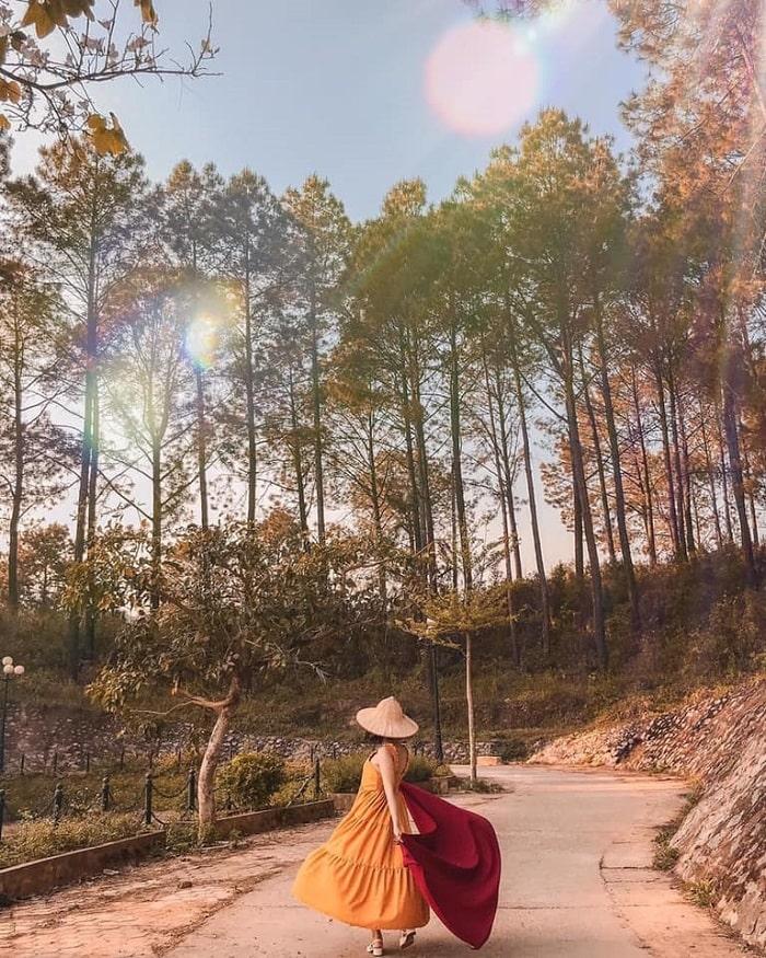 Du lịch Mộc Châu tháng 7 - đi chơi rừng thông Bảng Áng