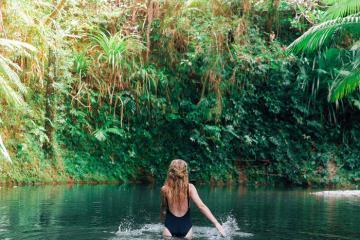 Toplist những khu rừng nhiệt đới đẹp nhất trên trái đất