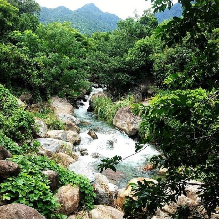 The beauty of Luong Stream Da Nang