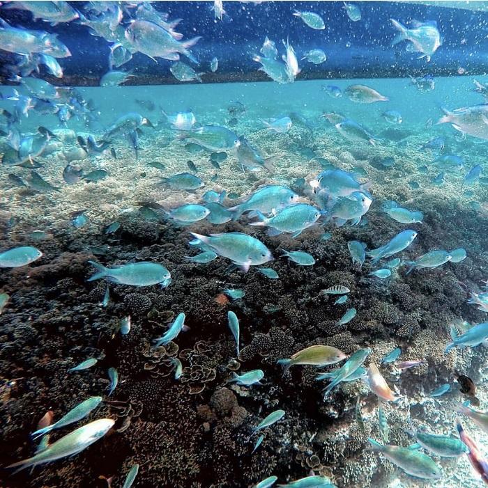 địa điểm du lịch ở Boracay