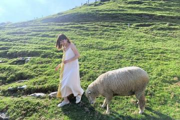 Chiêm ngưỡng vẻ đẹp của nông trại cừu Cingjing Farm