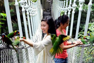 Review những sở thú ở Singapore có gì thú vị?