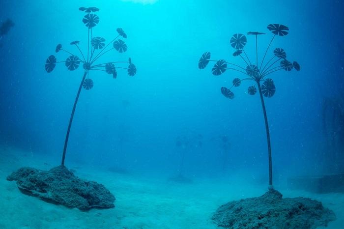 Bảo tàng nghệ thuật dưới nước Moua