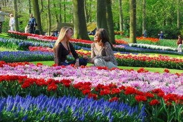 Tất tần tật kinh nghiệm du lịch Hà Lan lần đầu siêu trải nghiệm