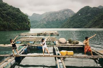 Combo Hạ Long 3N2Đ nghỉ du thuyền và resort 5* giá tốt tháng 8