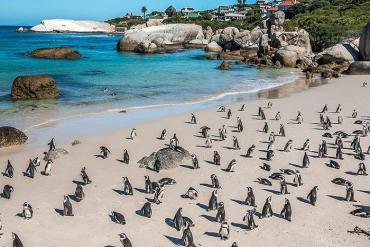 Những bãi biển lạ kỳ hấp dẫn khắp hành tinh