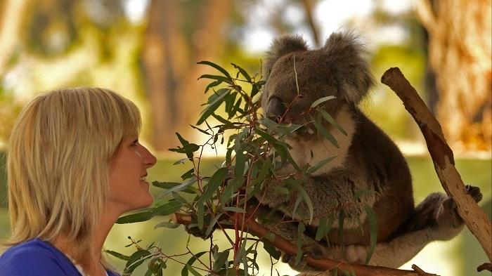 Royal Victorian Botanical Gardens - wildlife
