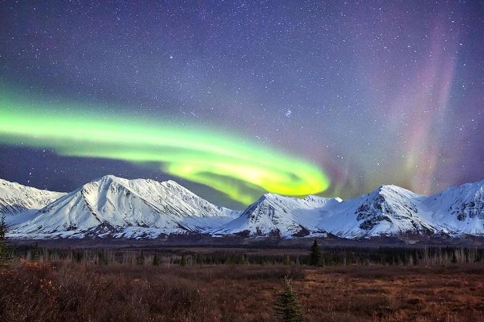 Công viên và bảo tồn quốc giá Denali - Kinh nghiệm du lịch Alaska