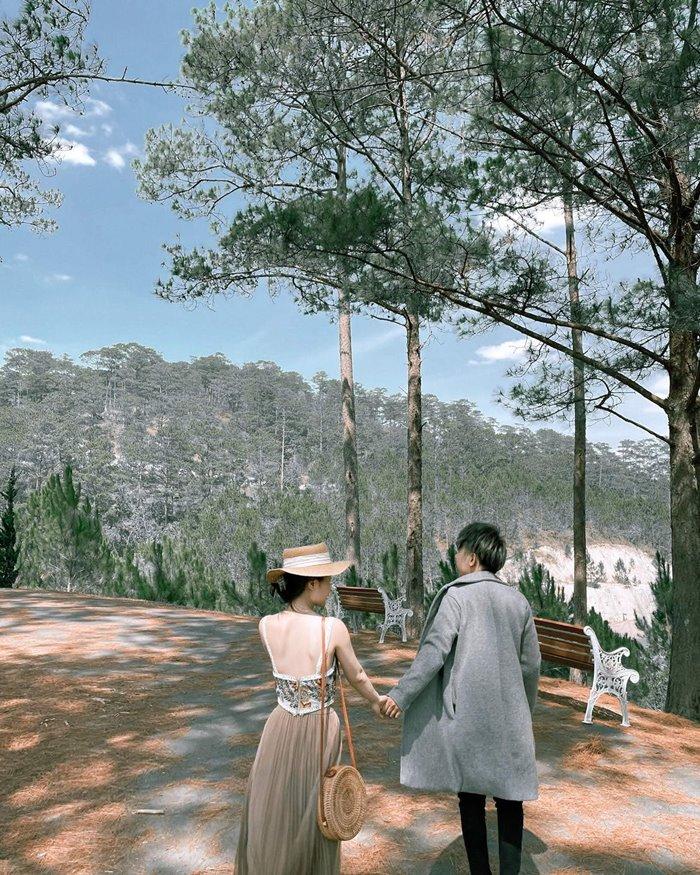 không gian ở Swiss-Belresort Tuyền Lâm -  khu nghỉ dưỡng giữa rừng ở Đà Lạt
