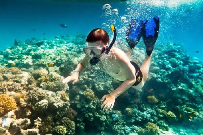 bãi biển Vũng BầuPhú Quốc - lặn biển