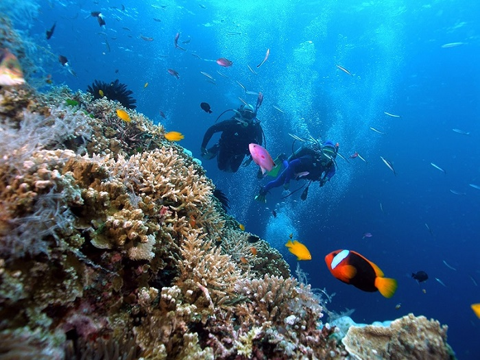 Ong Lang beach Phu Quoc - scuba diving to see corals