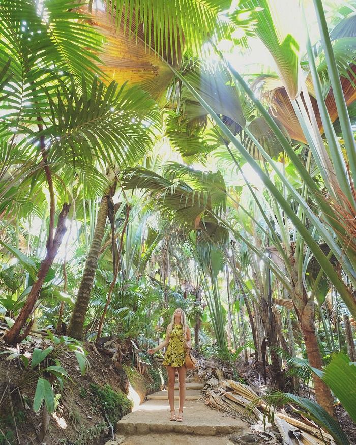 Khu bảo tồn thiên nhiên Vallée de Mai - Du lịch Seychelles