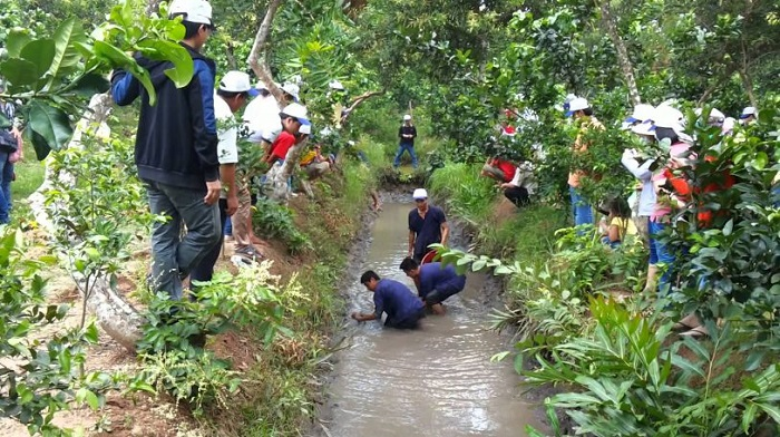 Tu Phuong That Dao eco-tourism area - slapping ditches to catch fish