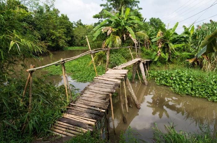 Về cồn Phú Đa - Khung cảnh làng quê
