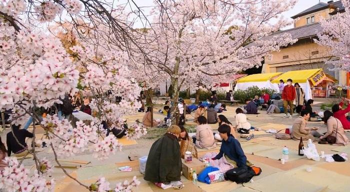 Kema Sakuranomiya - Lễ hội ở Osaka