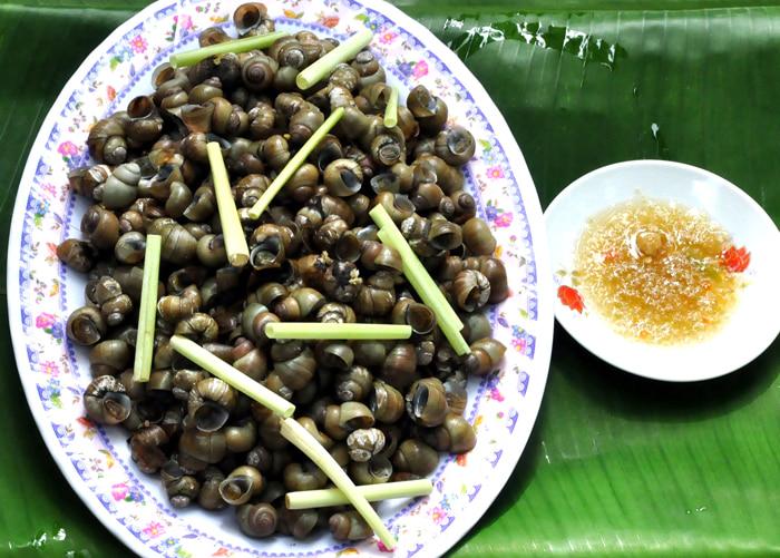 Về cồn Phú Đa - Ốc gạo sống ở đáy sông