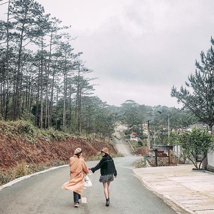 Rừng thông Măng Đen địa điểm sống ảo chất ở Kon Tum