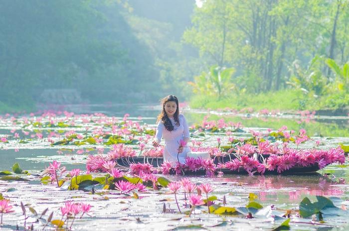 mùa hoa súng - thời điểm đẹp tại suối Ấu Vĩnh An