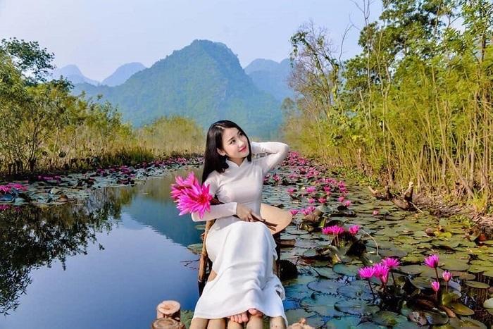 cây cối và non nước hiền hòa - vẻ đẹp nơi suối Ấu Vĩnh An