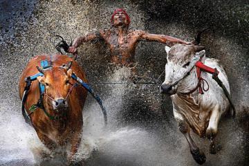 Các lễ hội truyền thống ở Indonesia đặc sắc và được mong chờ nhất