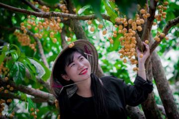 Tới vườn trái cây 9 Hồng thỏa sức vui chơi, sống ảo và ăn đặc sản miền Tây