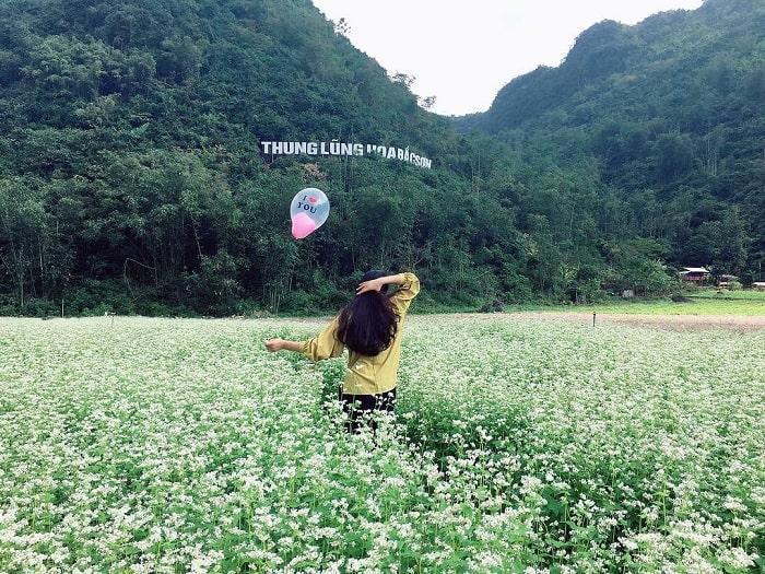 Thung lũng hoa Bắc Sơn xinh đẹp