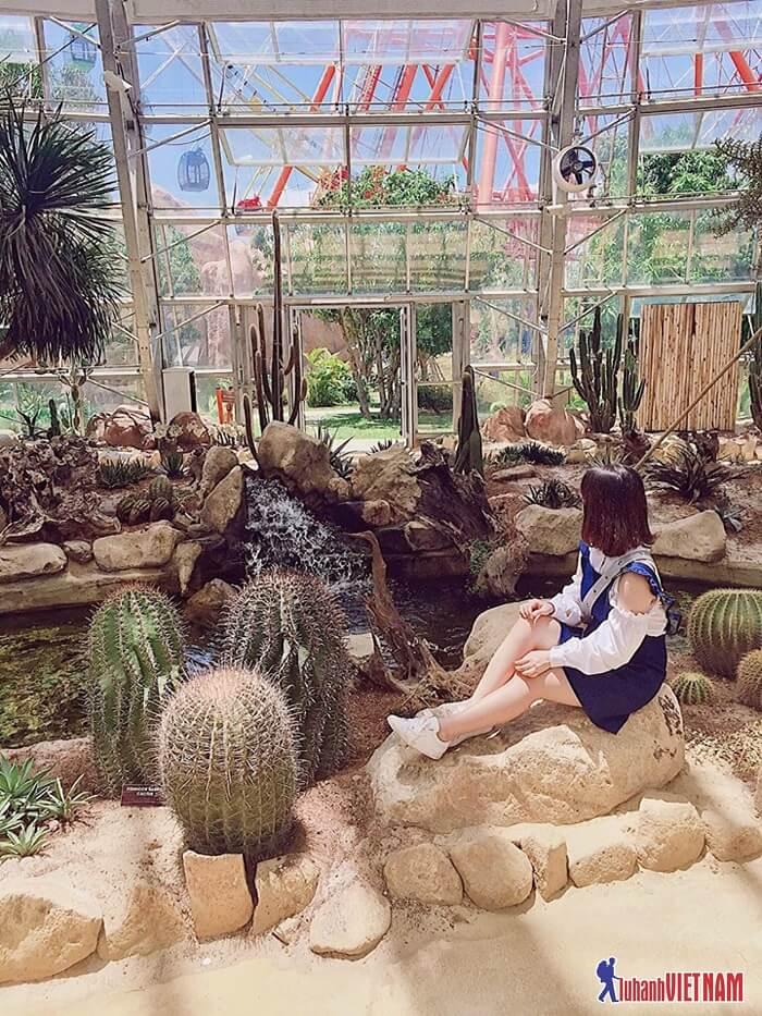 kinh nghiệm đi Vinpearl Land Nha Trang