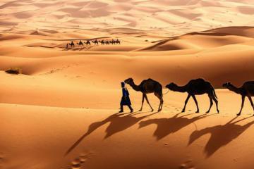 Du lịch sa mạc Sahara, trải nghiệm cái nóng như thiêu đốt
