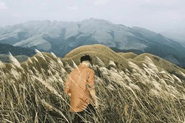 Kinh nghiệm du lịch mùa cỏ lau Bình Liêu