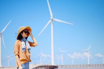 Chiêm ngưỡng cánh đồng quạt gió Bạc Liêu đẹp tựa trời Âu